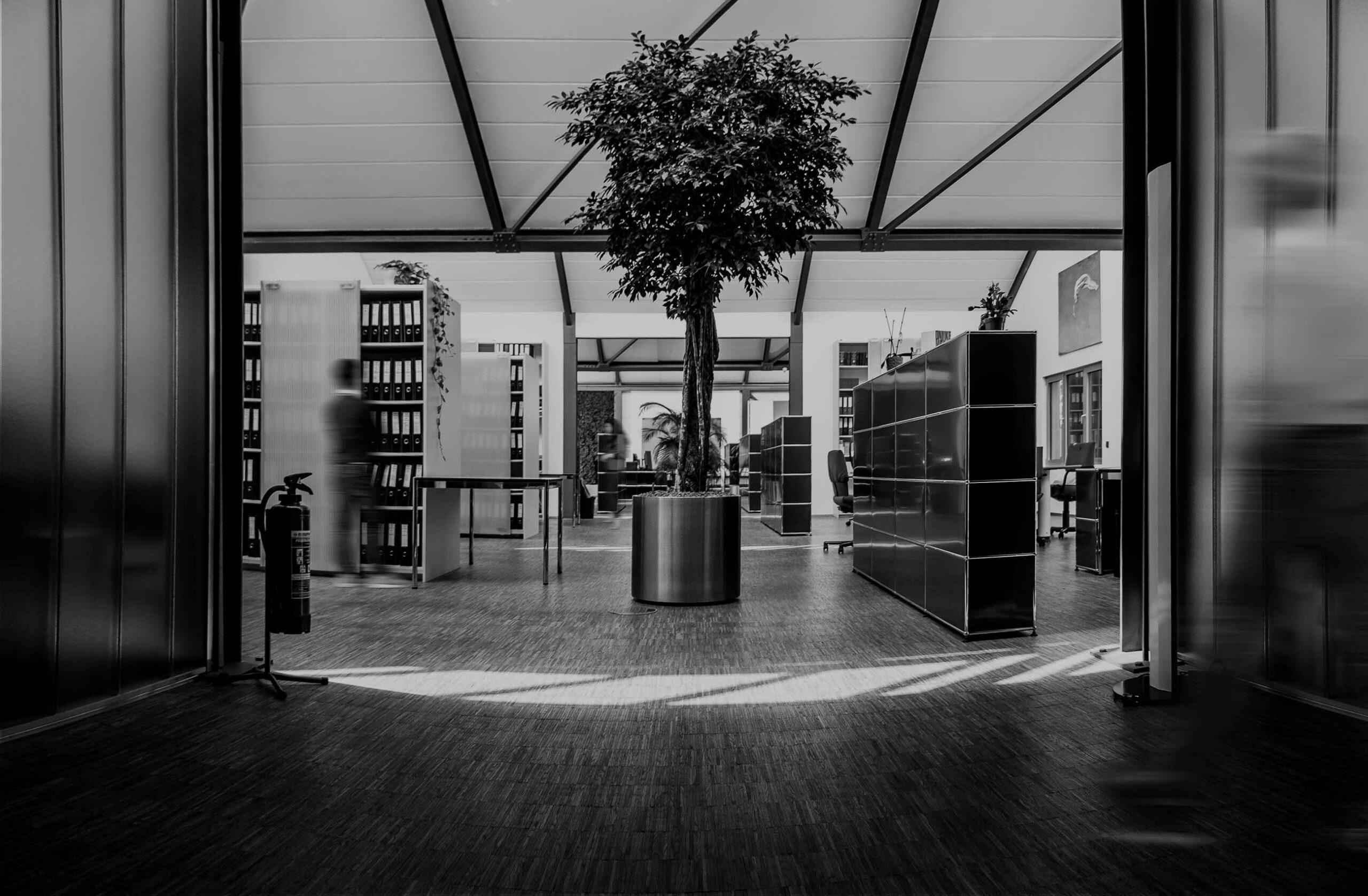 Klaus + Partner Steuer und Recht: Büros